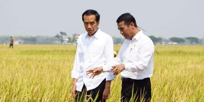 Cawapres Jokowi dari Timur, Menakar Peluang TGB dan Mentan Amran