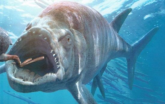Fosil Bulldog Fish