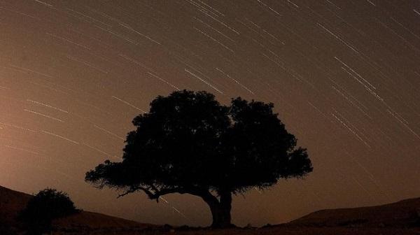 Hujan Meteor Perseid